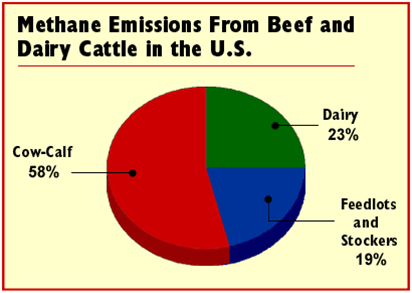 Methane from cattle pie chart